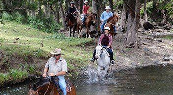 Horse Riding,