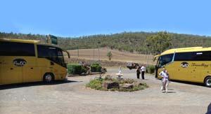 Bus Tours,