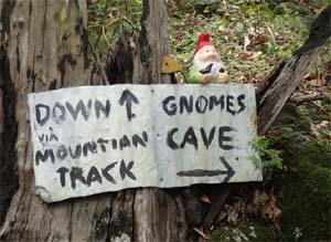 Bushwalks & Gnome Cave,