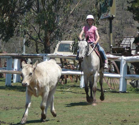 kids camps horse riding